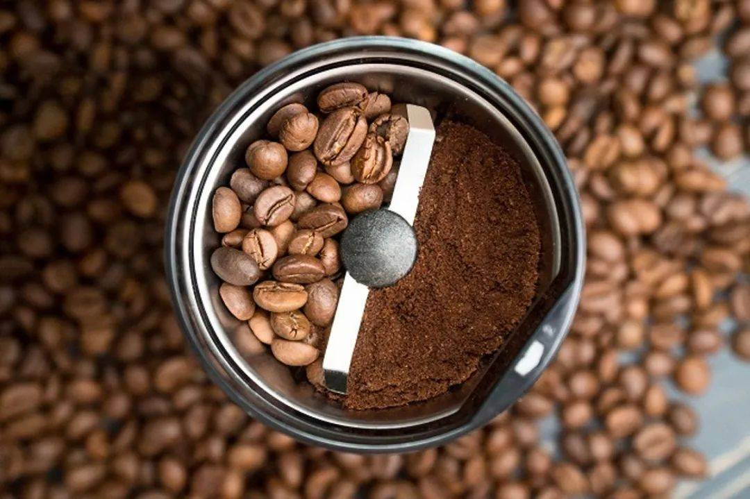 惊人的新鲜咖啡的秘密 防坑必看 第3张