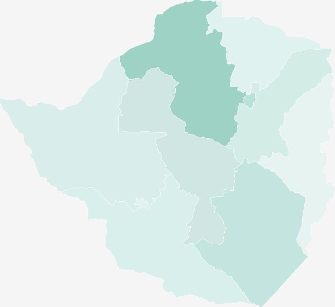 津巴布韦2017年经济总量_津巴布韦币图片