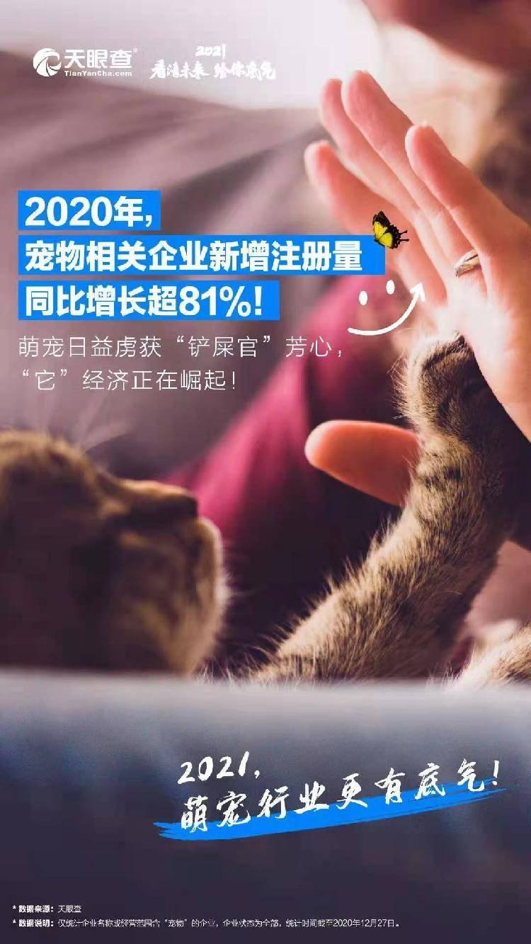全球疫情带来宠物市场爆发!今年,中国新宠物公司的数量增加了80%以上