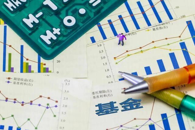 公款在激战中排名。股票冠军年收入134%,混血儿拿前三