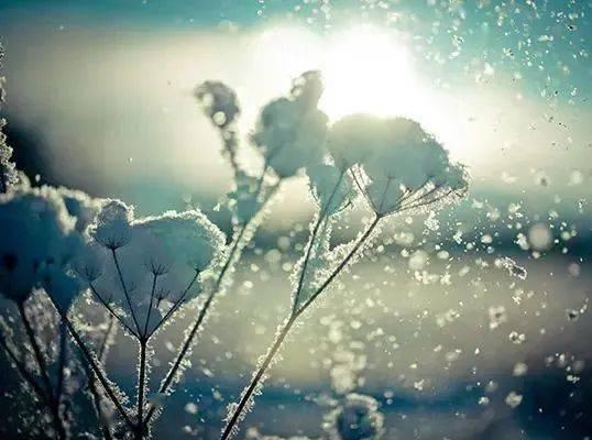 小寒|寒江孤影,落雪白头