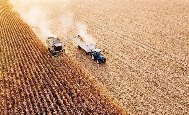 70后拒绝种地,80后不会种地,未来中国农村内的田地由谁种植?  第5张