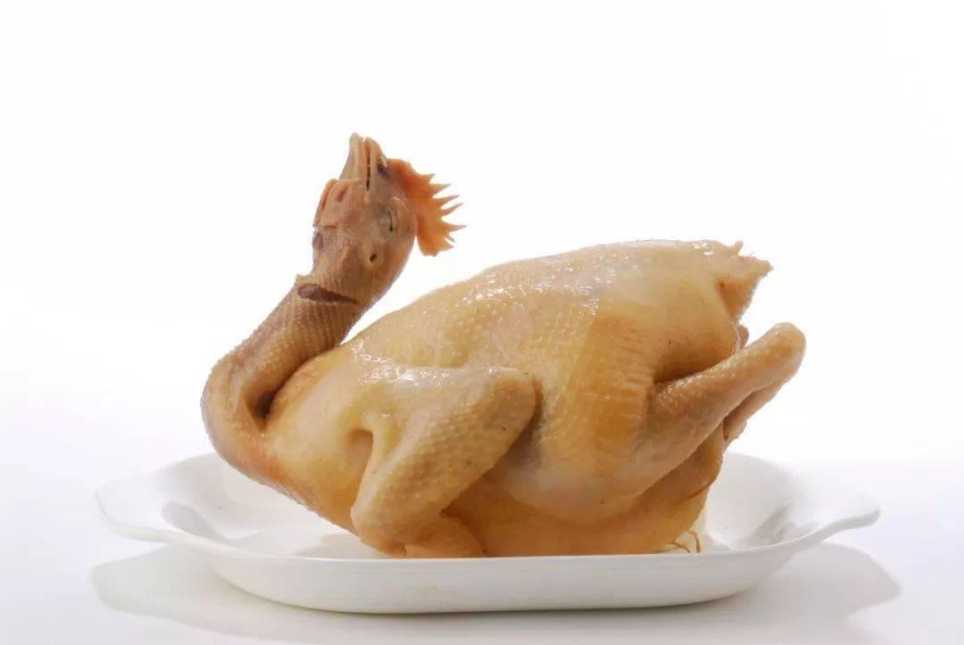 广东顶级名鸡大赏