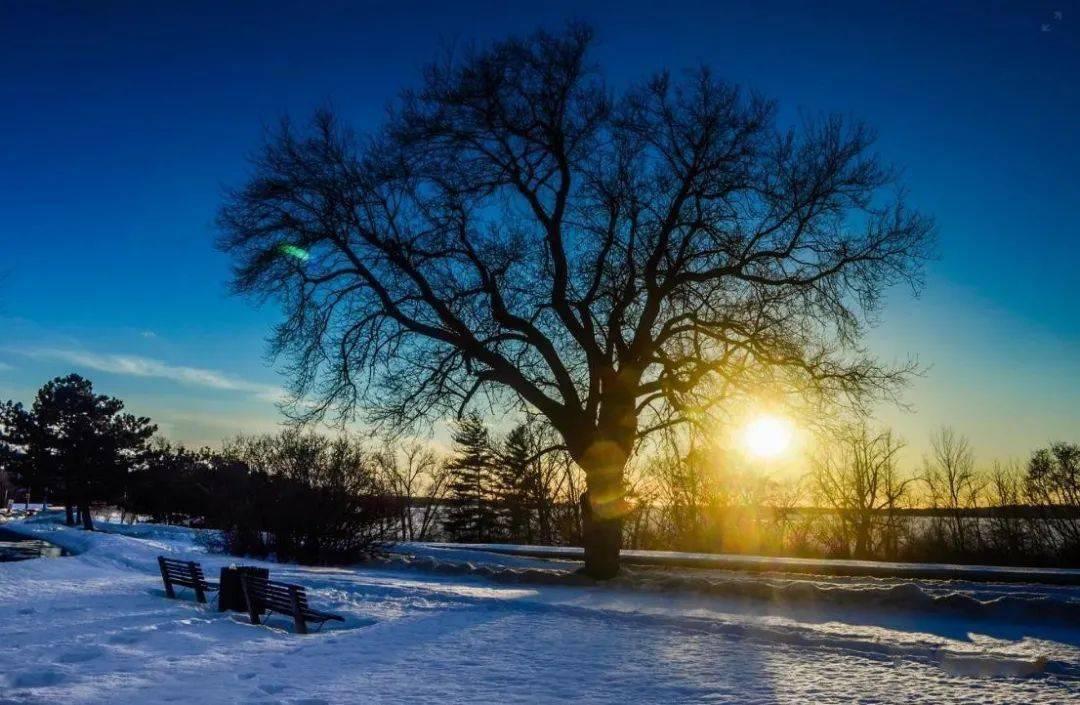 人民日报提醒:三九第一天,最冷最危险的时候来了!不懂规矩要吃亏(值得收藏)