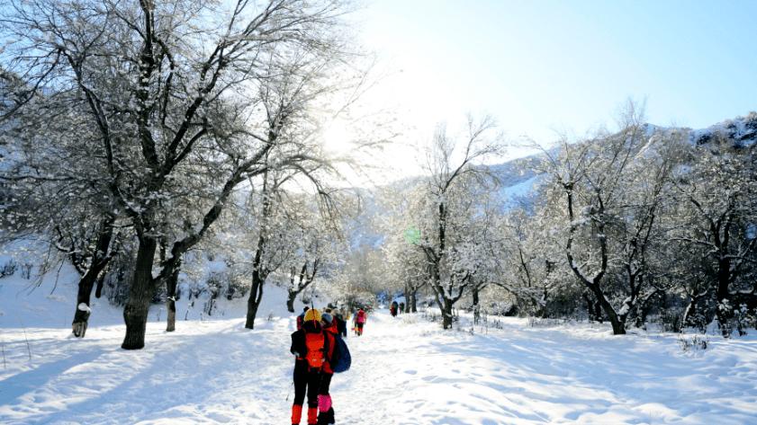 【西游户外】1月17日(周日)东山奇石寨  第6张