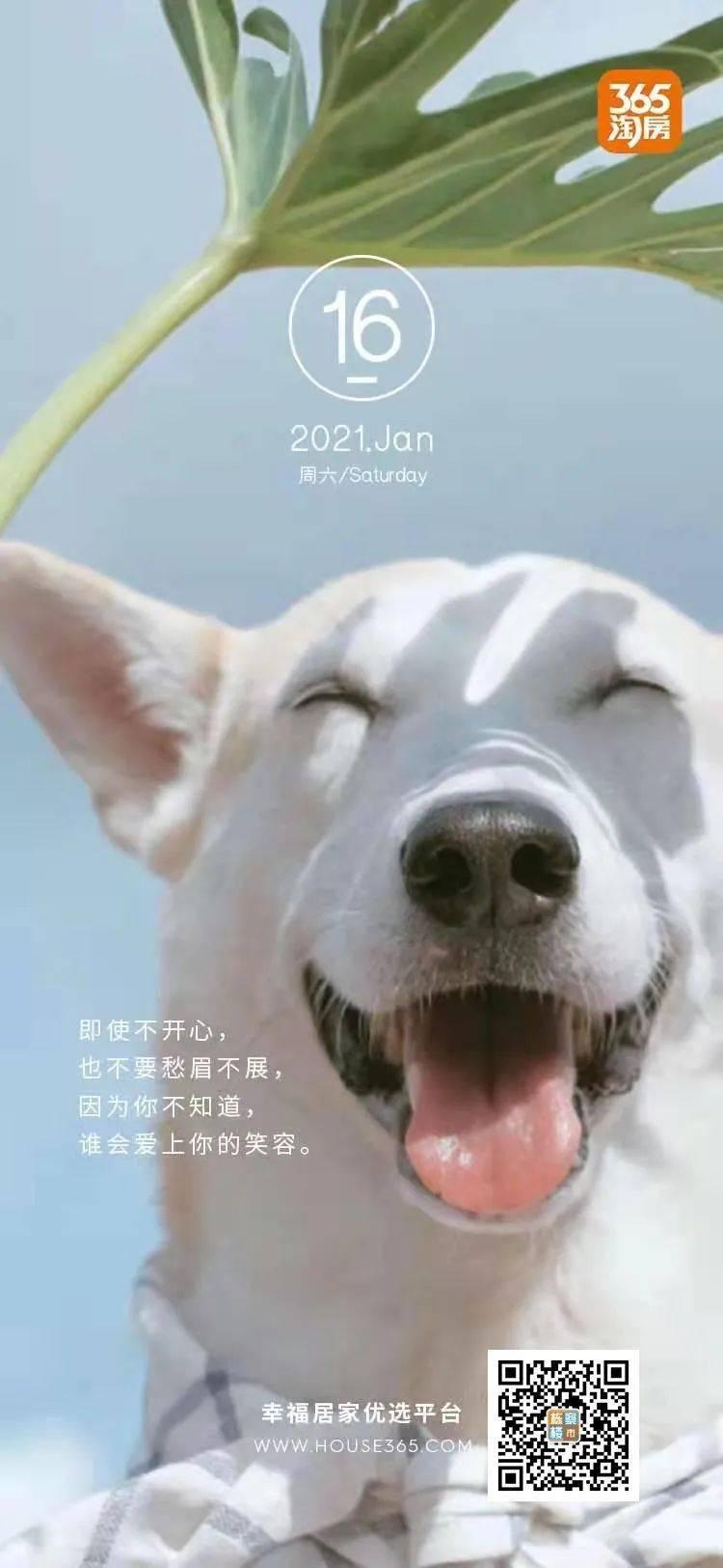 沈阳房价三连降 12月新房价格降0.4%!