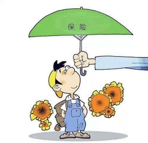 保险的十大真相 女人再穷也不要跑保险!插图(4)