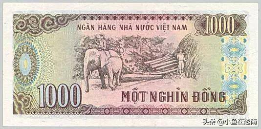 vnd是什么货币(vnd与人民币汇率)插图(17)