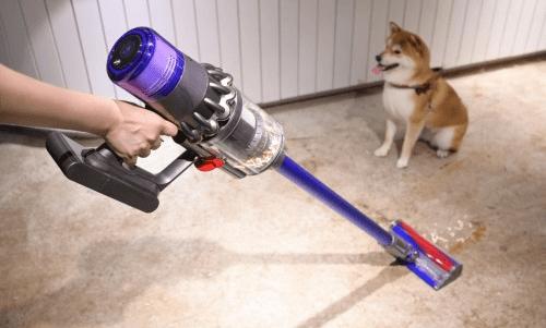 """""""净是宠爱""""——戴森科技为爱宠家庭营造洁净居家环境"""