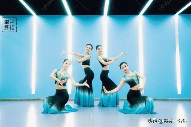 傣族舞蹈基本动作(傣族8个基本手位图解)