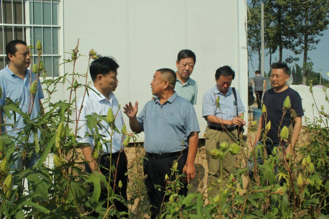 民盟安阳市委会赴安阳县韩陵镇调研脱贫攻坚和乡村振兴工作