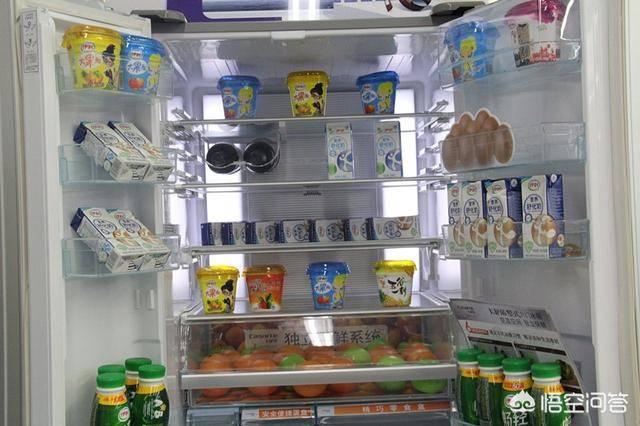 家用冰箱哪个牌子的好(什么牌子冰箱好前三名)