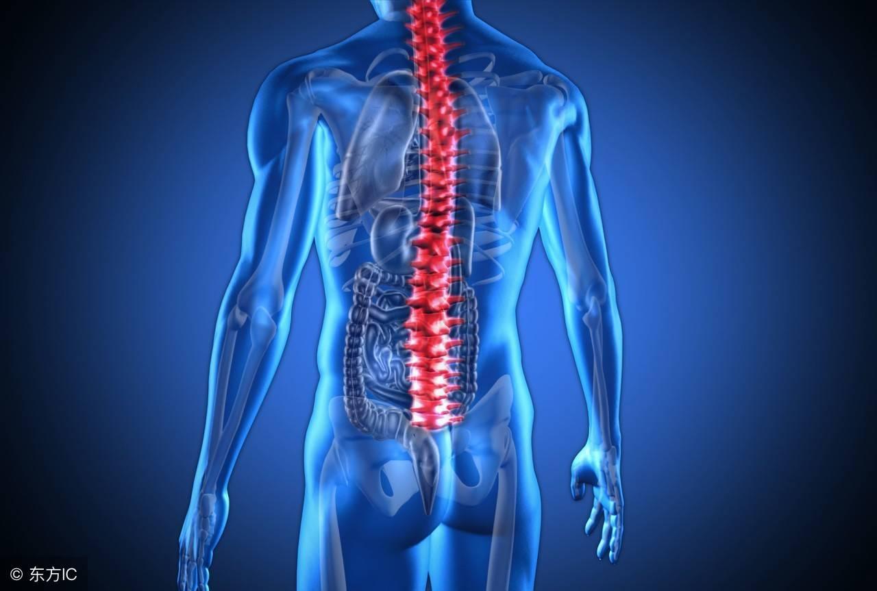 脊椎炎一般能活多少年(脊椎炎会影响寿命吗)插图