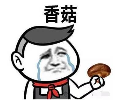 家庭蜗居的意思(香港窝居究竟有多窝)插图(7)