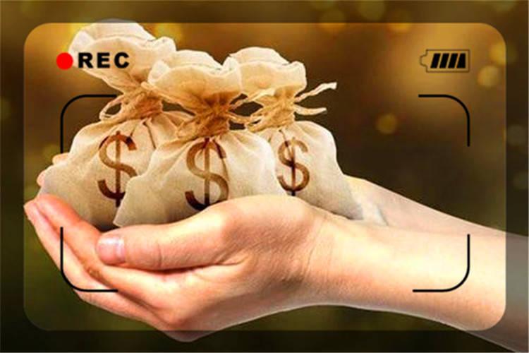今年干什么最赚钱(今年什么项目赚钱多呢)