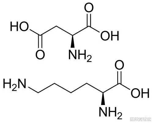 氨基酸不能大补特补,科学补充氨基酸能让身体充满能量
