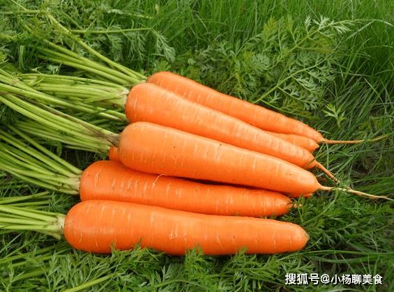 吃胡萝卜有讲究!用油炒着吃还不如不吃,我做错了20年