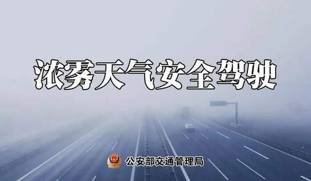 大雾天气,安全驾驶提示速收好!