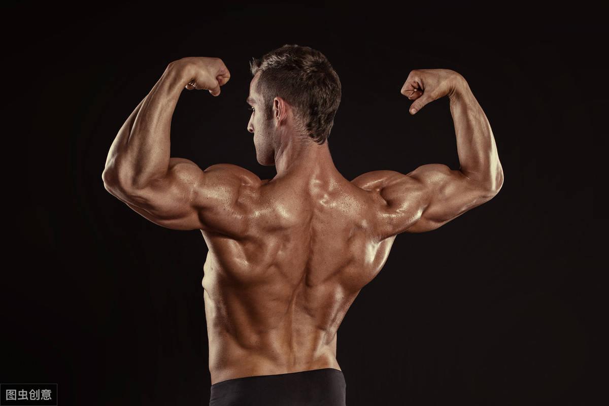 健身为什么要练背?一组背部训练动图,打造宽厚的背肌!