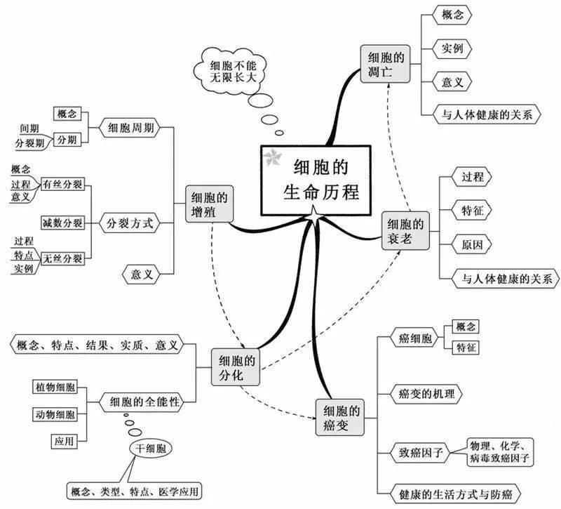 五月色婷婷中文开心字幕_任我爽橹在线视频精品一_日本www网站视频免费