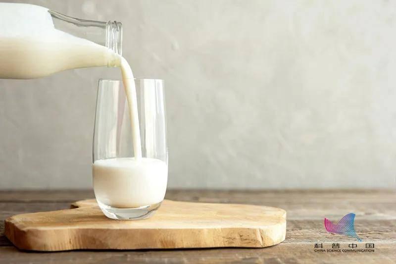 脱脂奶、高钙奶、舒化奶、有机奶…牛奶到底该如何选购?看完终于会挑了