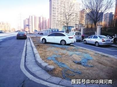 郑州碧云路500米路段已通车7年为啥绿化带一直还露着黄土?