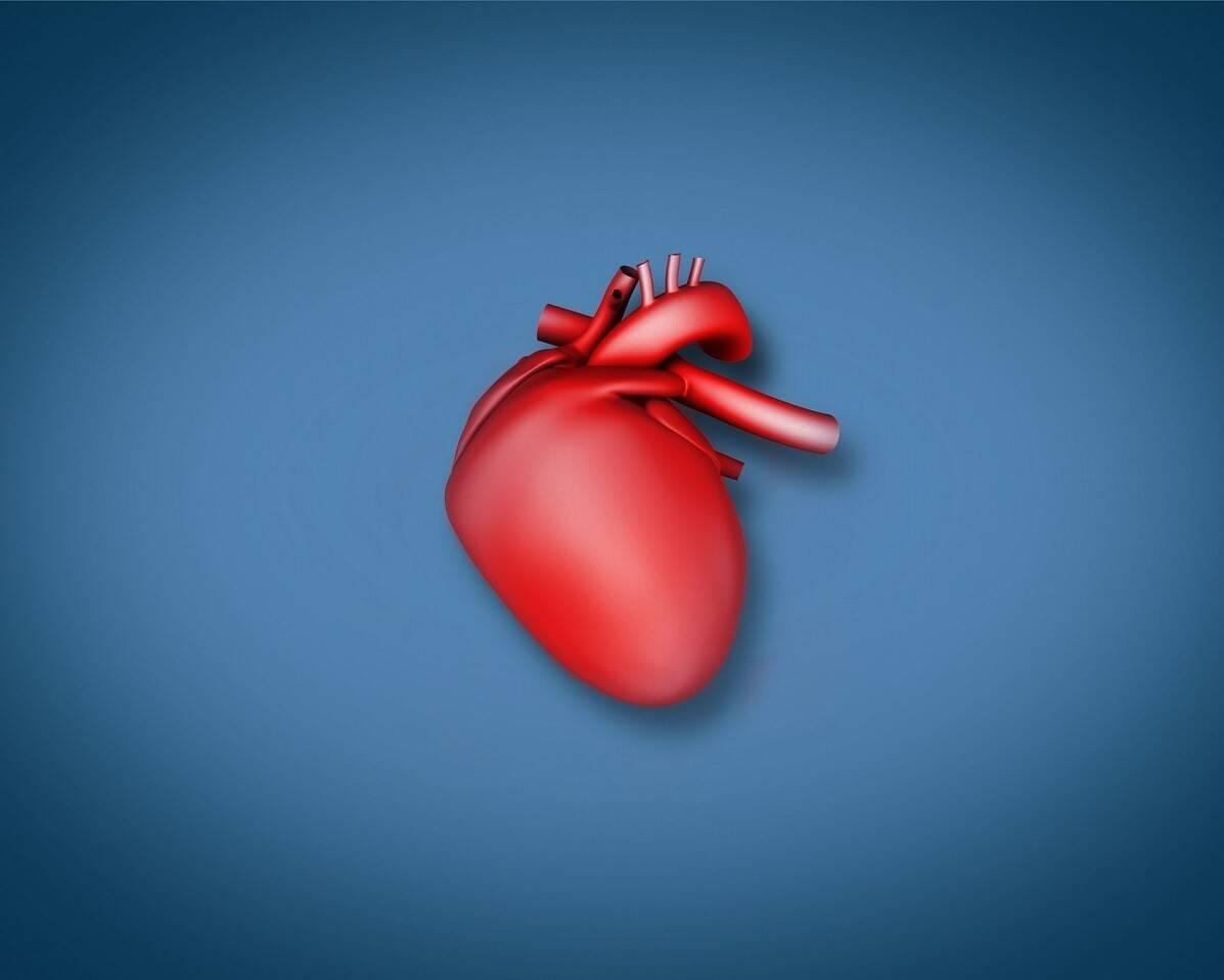 """治疗高血压,""""地平""""与""""洛尔""""联合使用,对心脏的保护更好"""