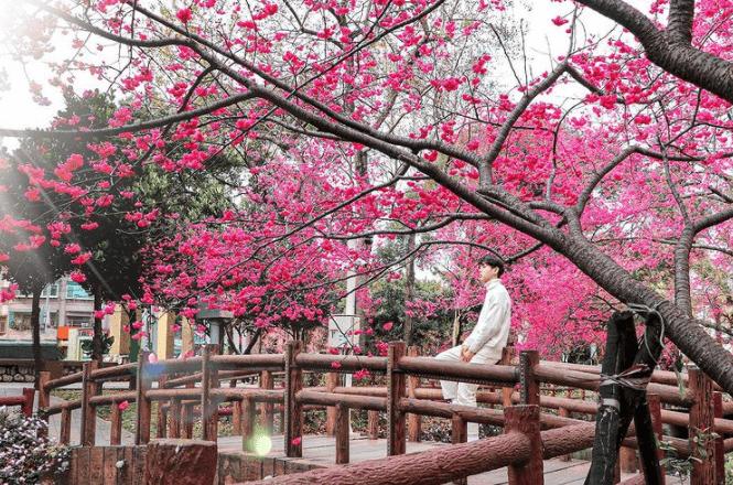 桃园落地别急着去台北,先在中坜玩个遍。2021中坜景点推荐14处清单!