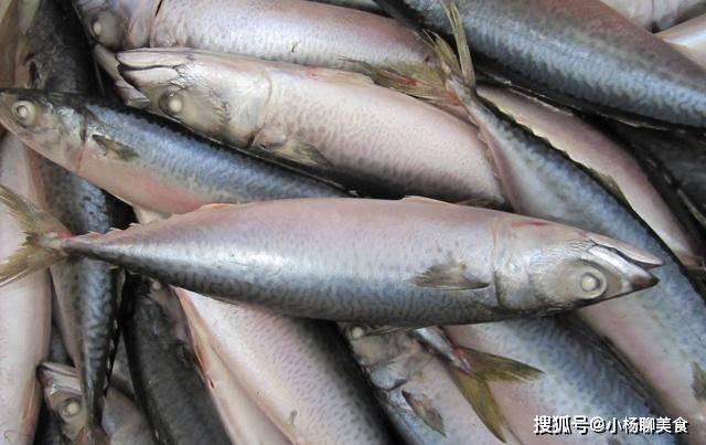 买鱼时,多买这三种鱼,都是野生的,味道比养