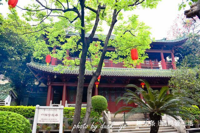 广州最古老一座塔,六榕寺因其出名,九井环基千年历史成斜塔!
