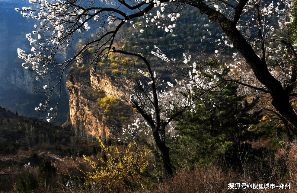 沾着新年喜气,蹭着春日欢愉来太行大峡谷再次相遇!