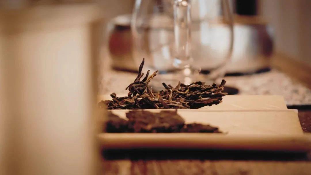 从活性看潜力,好的熟茶会有很长的适饮期