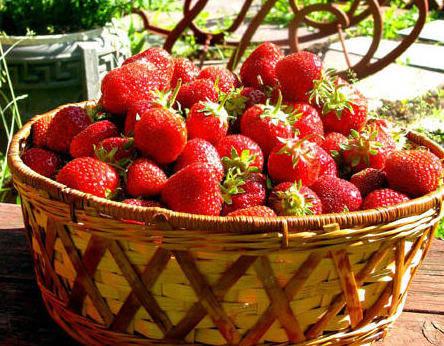 4月养生宜养脾胃,多吃这几种应季水果,功效便
