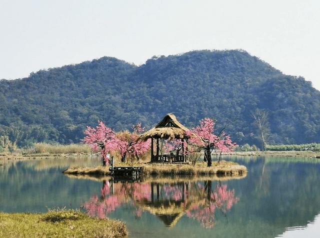 云南的一个小村庄,是《三生三世》中的青丘,被誉为小香格里拉!