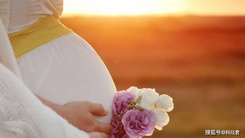 为什么有的孕妇会遇到胎停育?原来离不开这四个因素 孕妇需谨记-家庭网