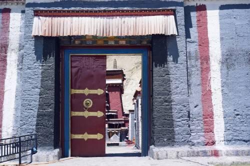 西藏萨迦县历史悠久,当地人淳朴善良,在海拔4300米种藏葱