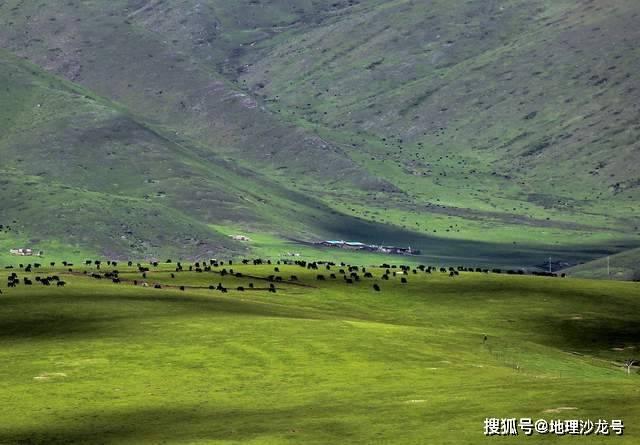 为什么高寒地区人口稀少_青藏地区高寒思维导图