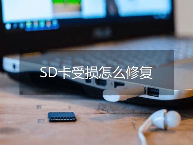 怎样恢复SD卡数据?这两个方法值得一试