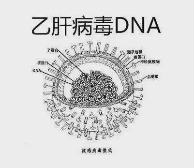 天顺2登陆平台-首页【1.1.3】