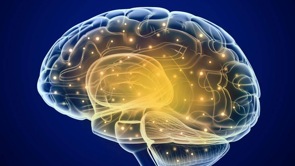 右脑潜能开发