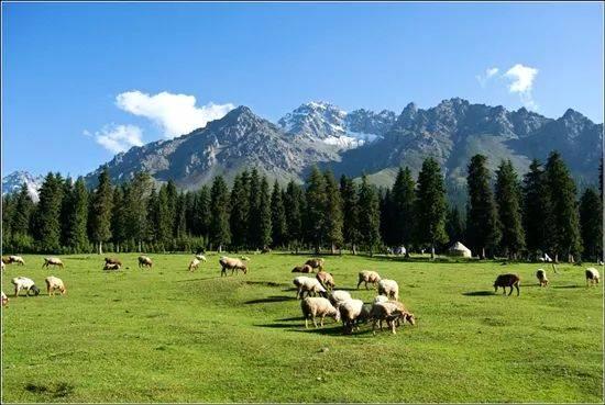 这座低调的新疆小城,却美得如此动人心魄!