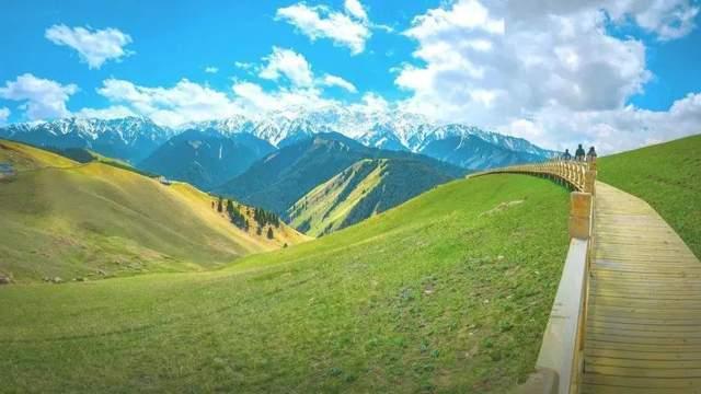 800公里风景长廊,美过北欧!比法国浪漫!即将迎来黄金颜值期