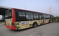 游览西安城区景点 坐这趟公交车就够了