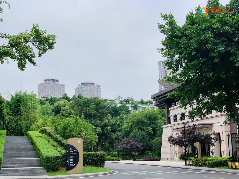 2021上半年重庆gdp