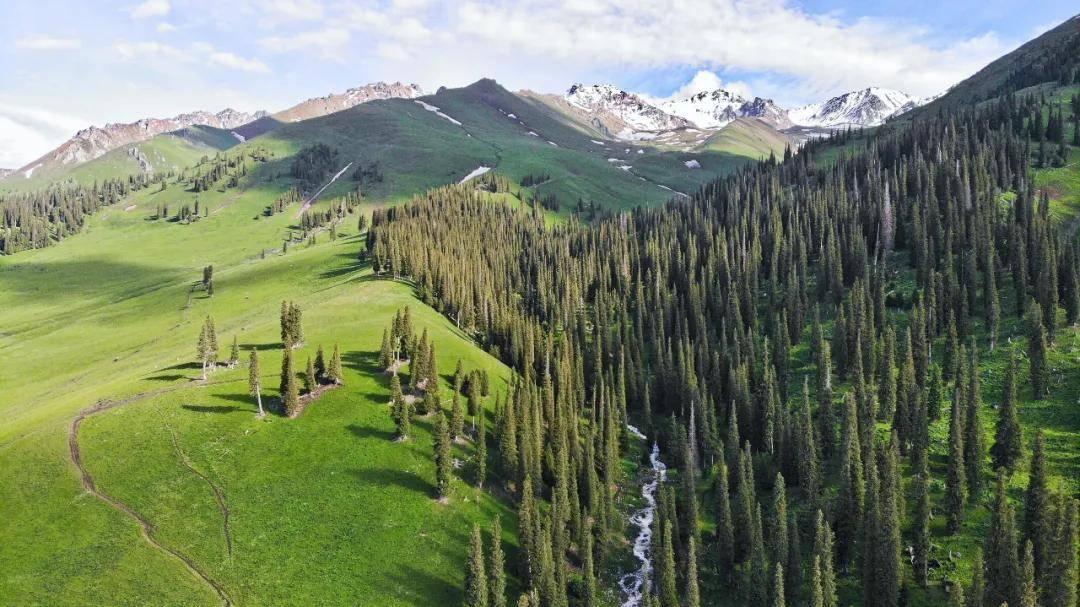 森林养生旅游规划的五个要点