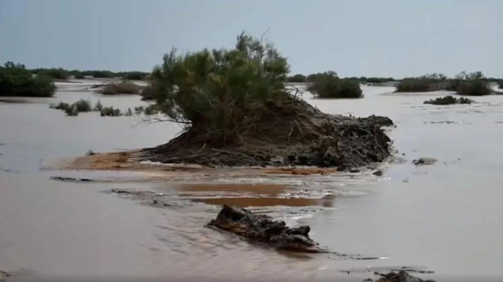 塔克拉玛干沙漠发洪水了!北方或将重回温暖气候模式,是好事吗?