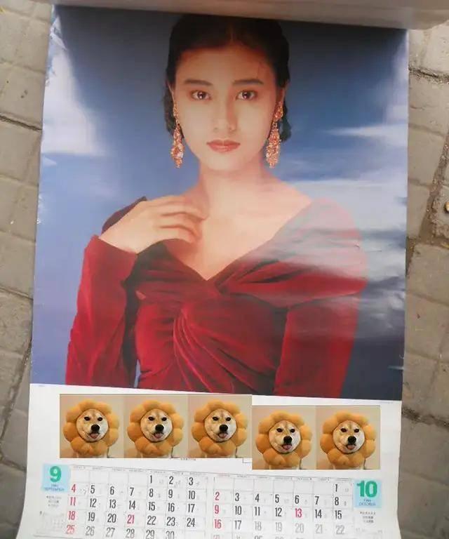 图片[13]-八九十年代的女明星挂历,复古又雷人,都是青春的记忆,好怀念啊-妖次元