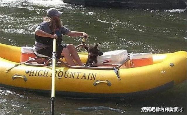 狗熊不慎掉进水里,为了能够保住小命,打起了河边男子的主意