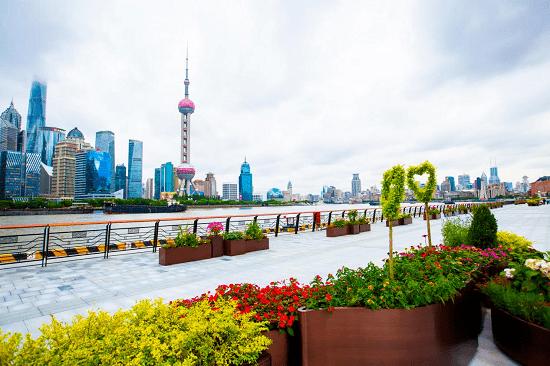 """""""十全十美,花好月圆"""" 2021上海邮轮游艇旅游节盛大开启"""