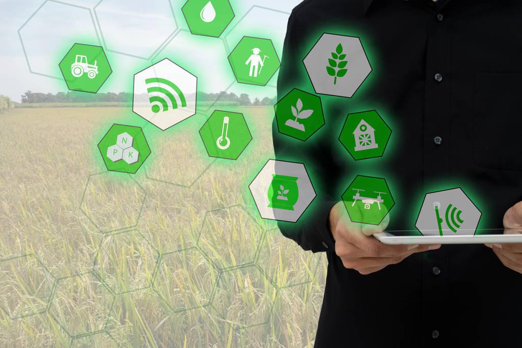 人工智能技術正在掀起一場農業革命